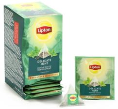 Lipton Exclusive Selection Tea Delicate Mint 30 St
