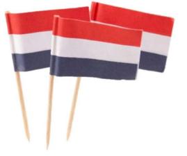 Hollandse Vlaggetjes 5X144 St