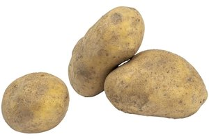 Aardappel Bonken Gewassen 10 Kg