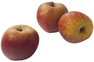 Appels Goudreinetten 1,5 Kg