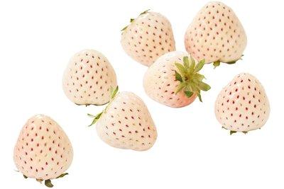 Whiteberry Aardbeien 100 Gr